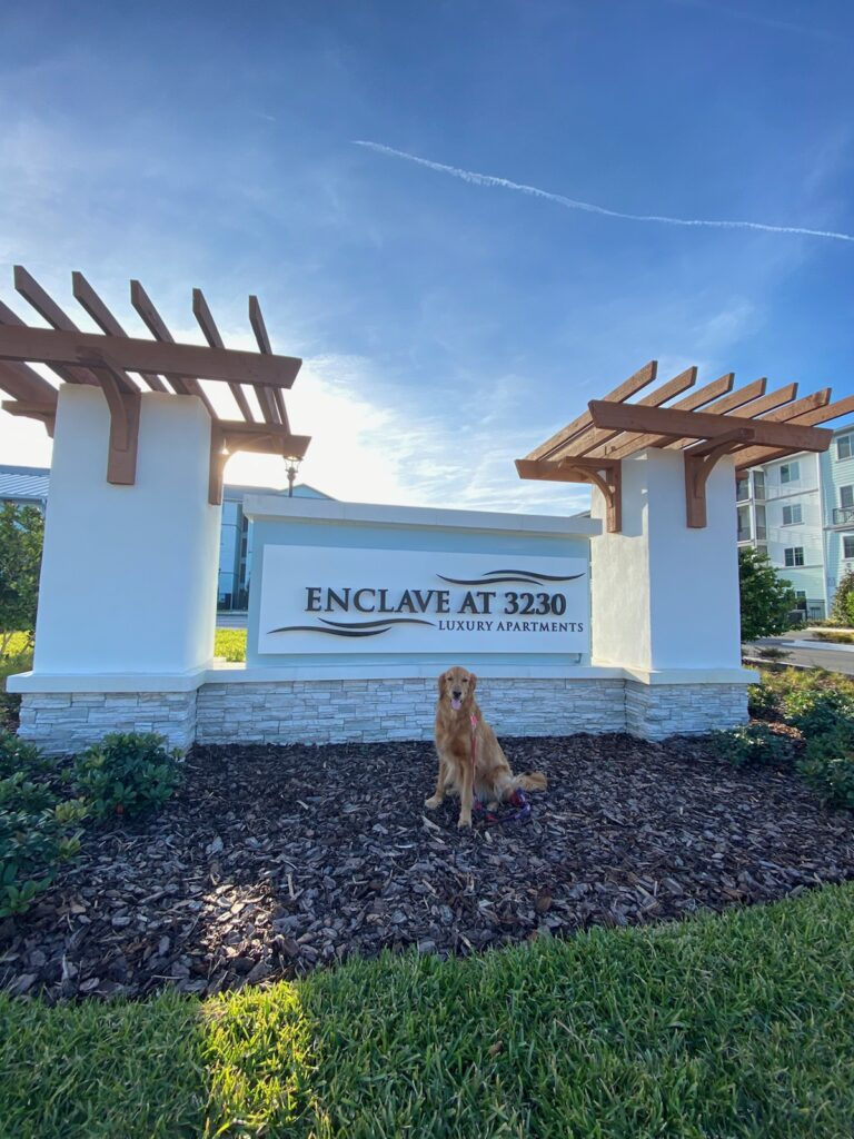 Golden Retriever in front of Enclave at 3230, South Daytona